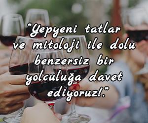 Kavala Wine Tasting Tours